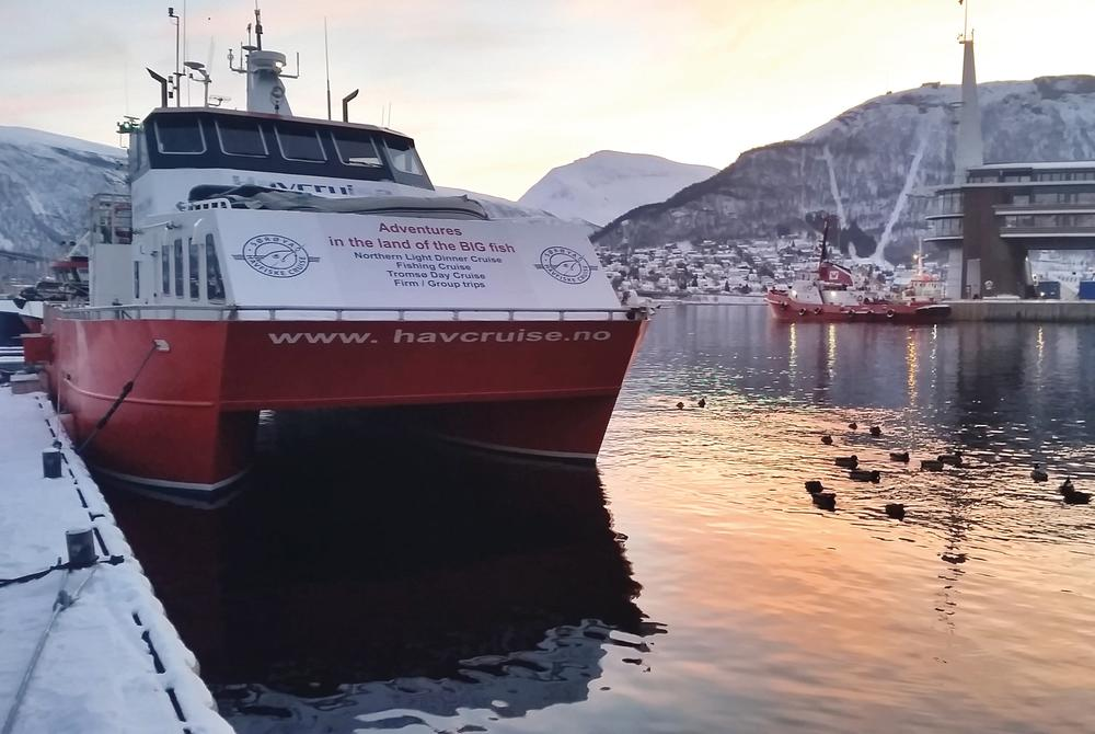 Enjoy a Northern Lights cruise in Tromso Northern Norway