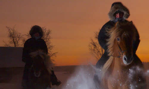Northern Lights on horseback