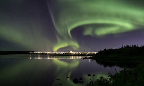 Reykjavik: Whales, Northern Lights & the south coast