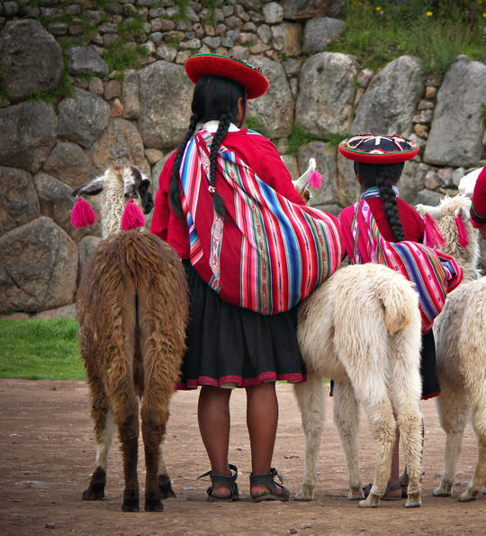 Peruvian women in traditional dress, with their alpacas