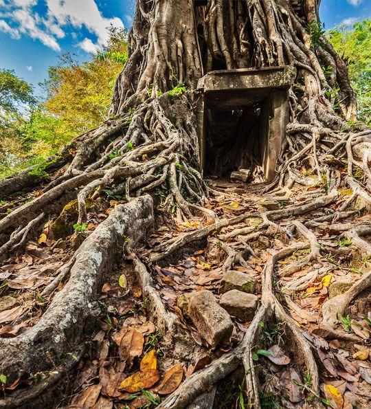 Prei Kuk Pre-Angkorian temple ruins, Cambodia