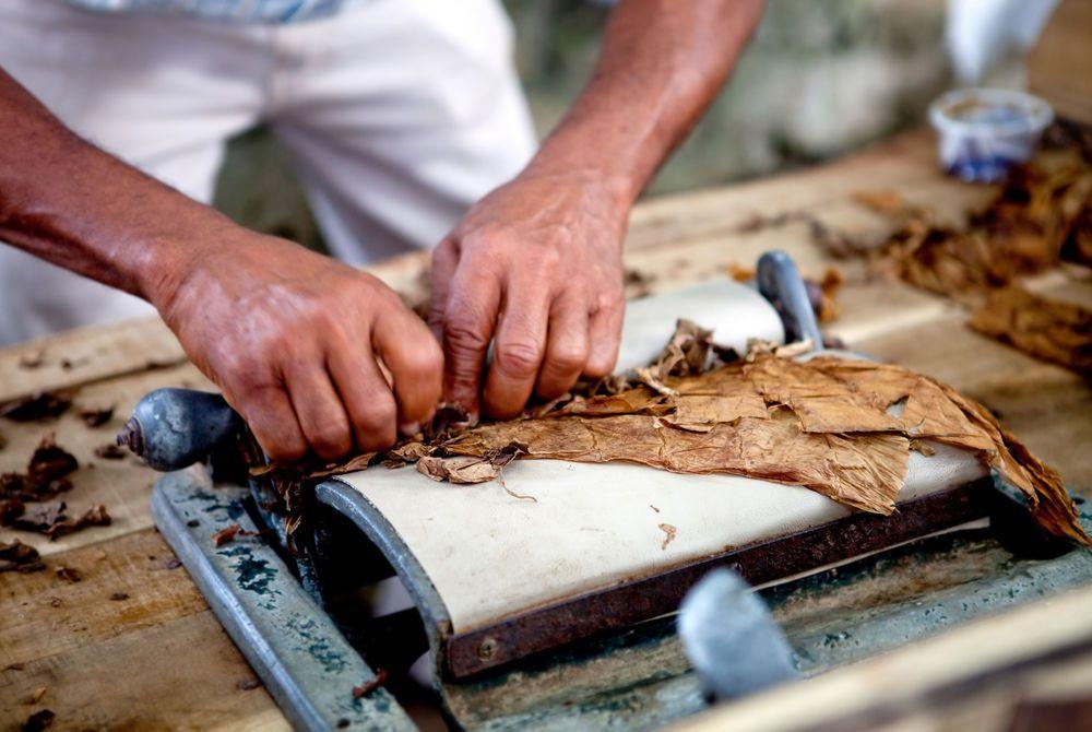 Rolling cigars, Havana, Cuba