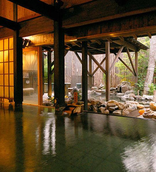 Hot spring, Hakone ryokan