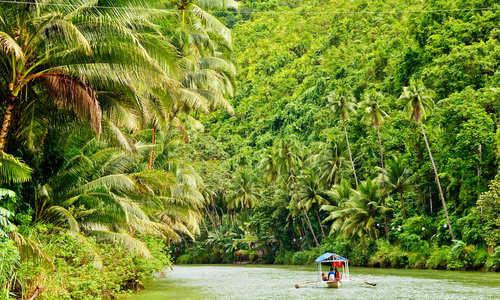 Rainforest River, Amazon, Brazil