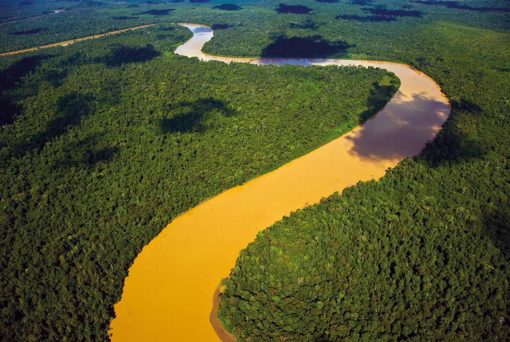 Rainforest and Kinabatangan River, Borneo