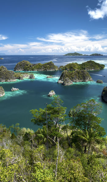 Raja Ampat Explorer cruise
