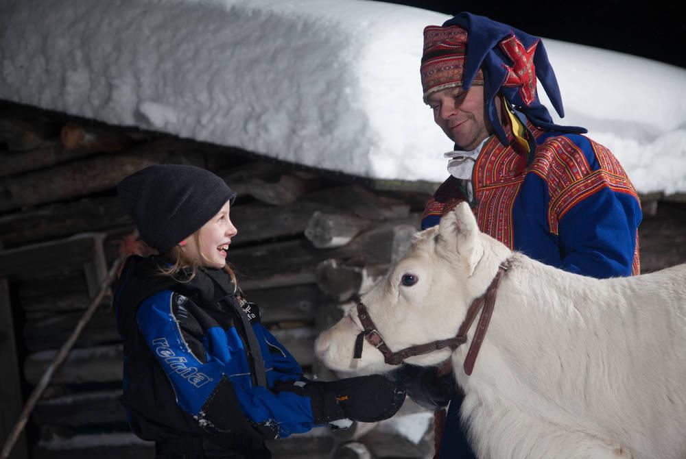 Reindeer sled ride, Safartica