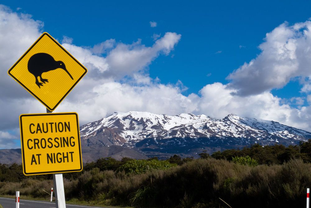 Road Sign Attention Kiwi Crossing, Mount Ruapehu, Tongariro National Park, New Zealand