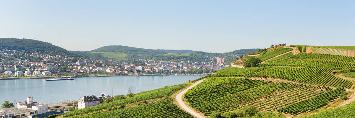 Rudesheim am Rhine, Germany