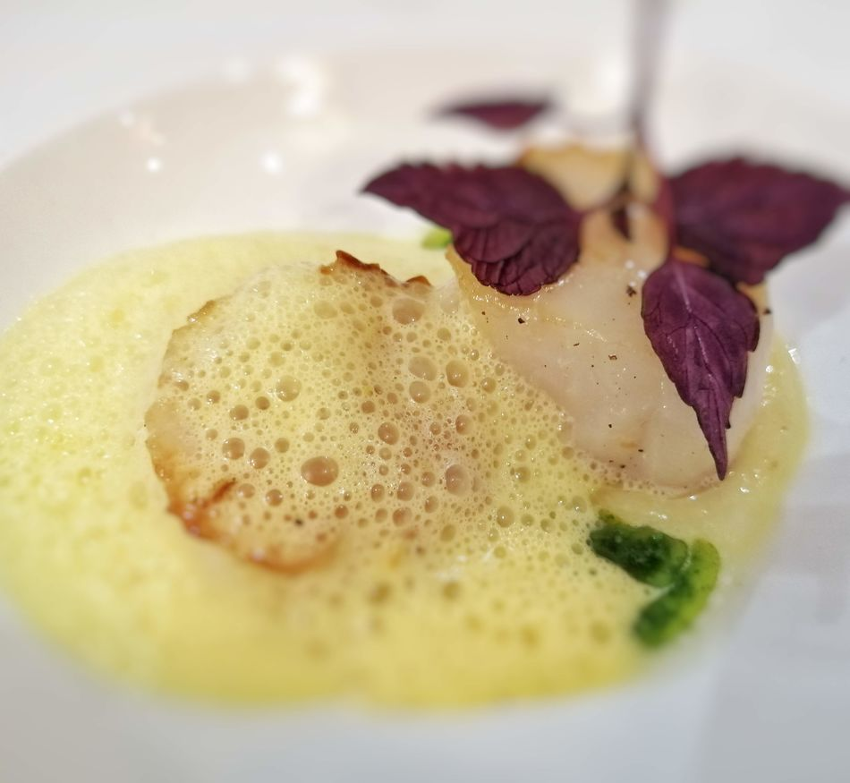 Hand-dived scallops, SS Beatrice, Uniworld Boutique River Cruises