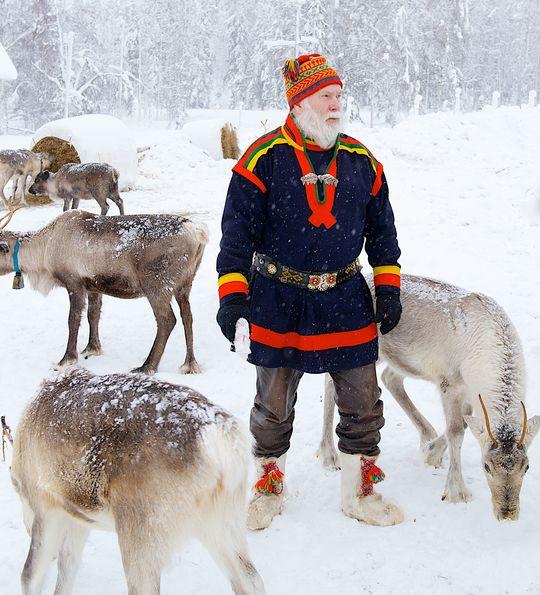 Sami reindeer experience, Arctic Retreat