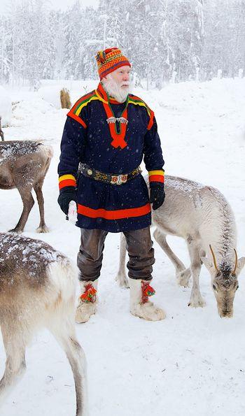 Sami reindeer experience - Treehotel