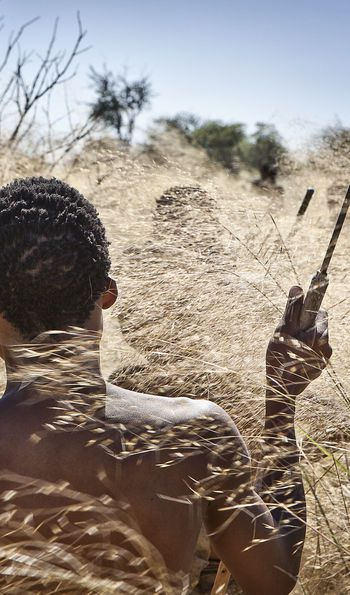 San Bushman hunting in the long grass