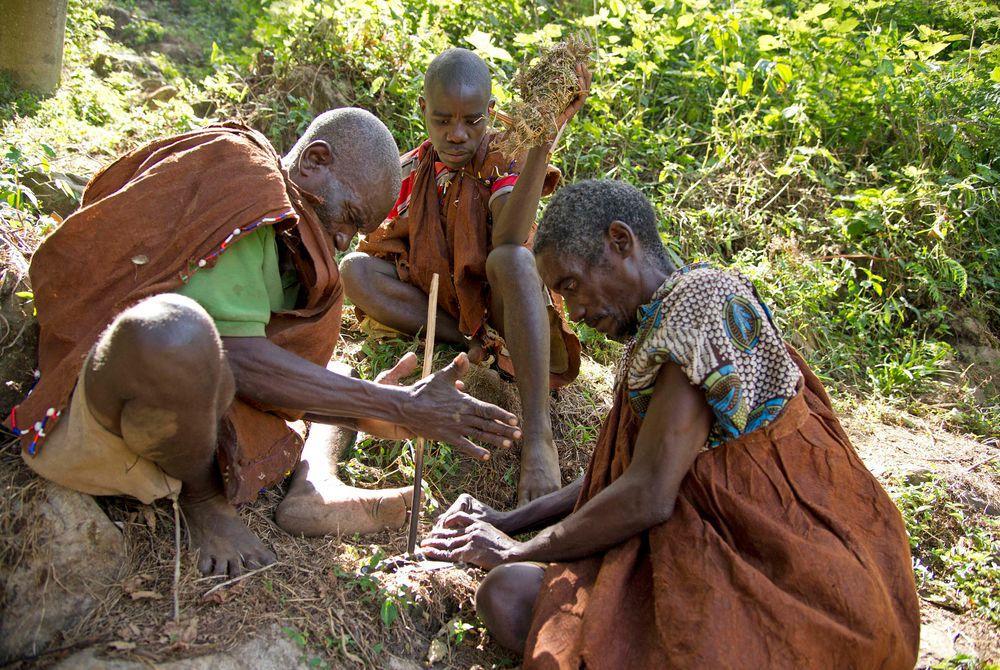 Batwa interaction