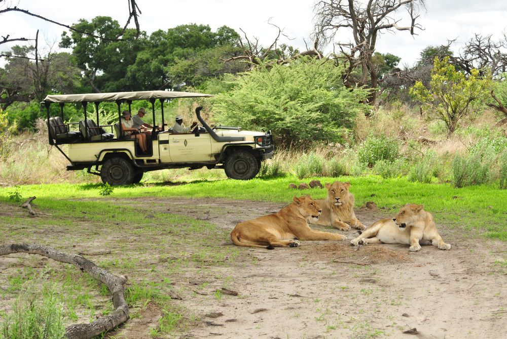 Sanctuary Chief's Camp, Okavango Delta, Moremi Wildlife Reserve