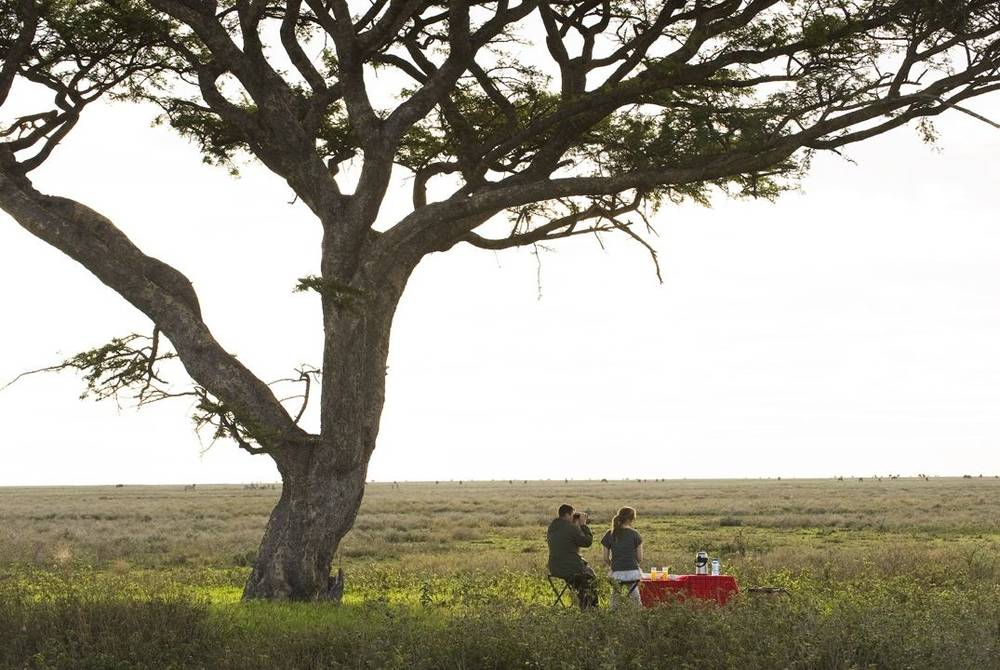 Sanctuary Kusini, the Serengeti