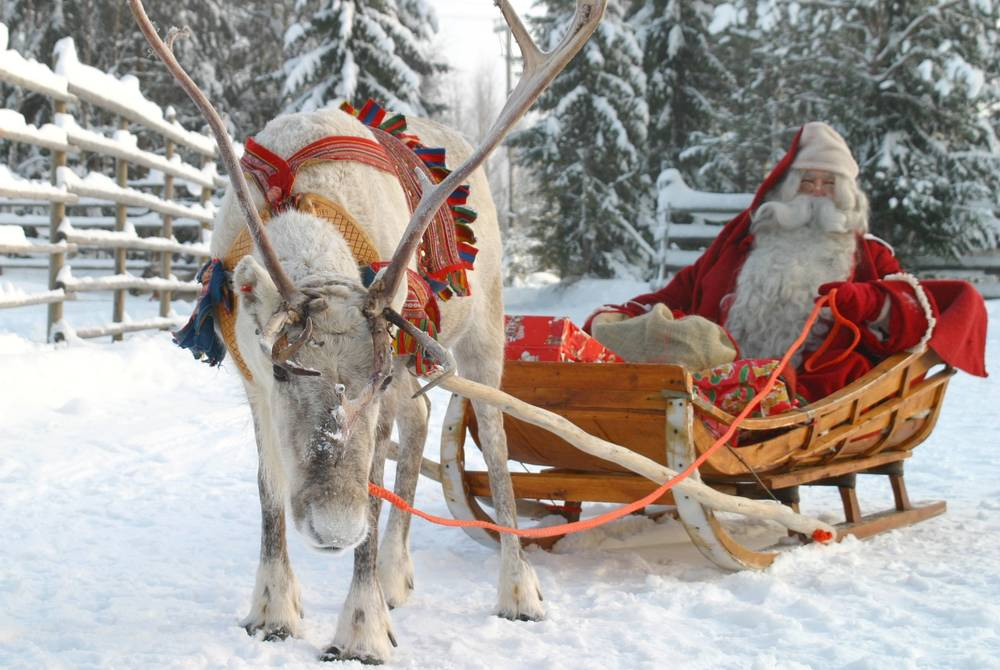 Santa Claus in a Reindeer Sleigh