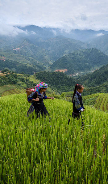 Hill tribe, Sapa, Vietnam