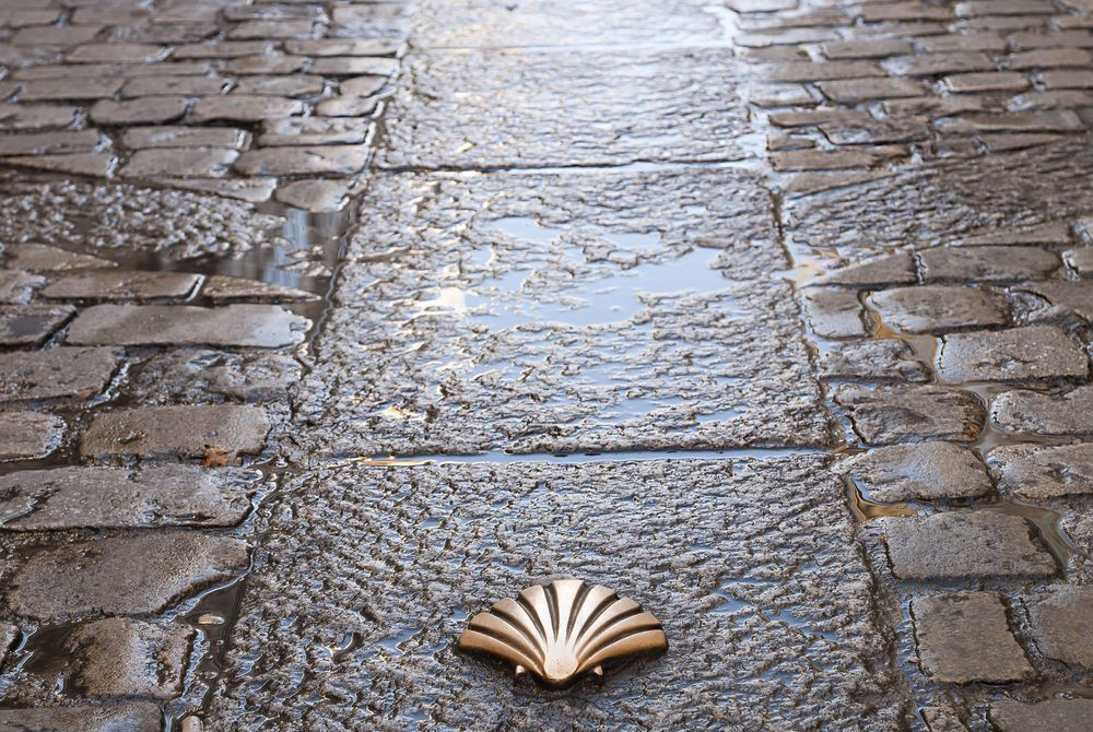 Scallop symbol of the Camino de Santiago walking trail, Spain