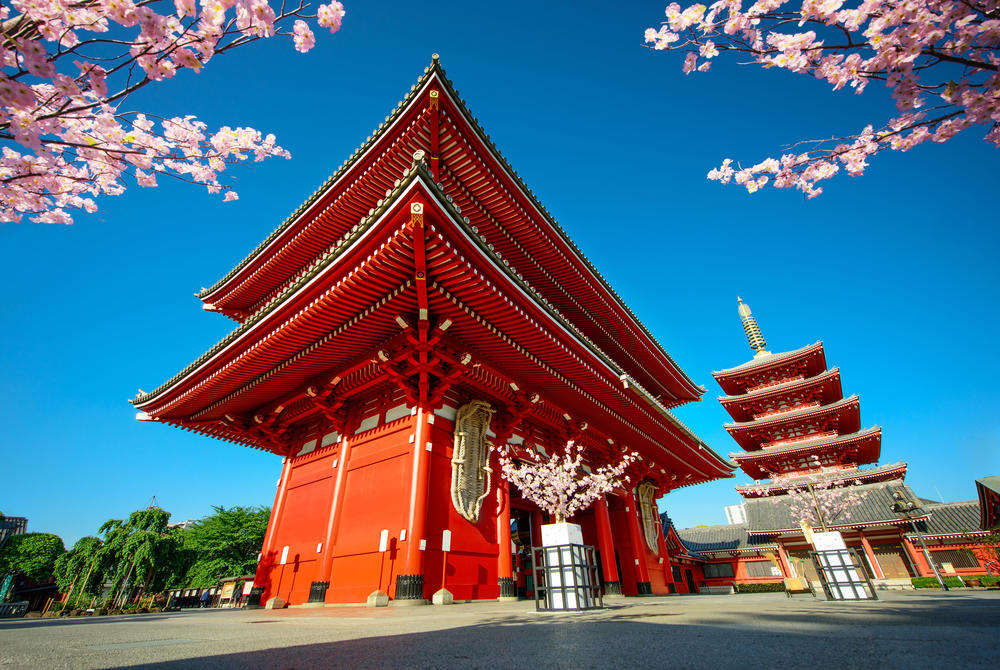 Temple in Japan with cherry blossom