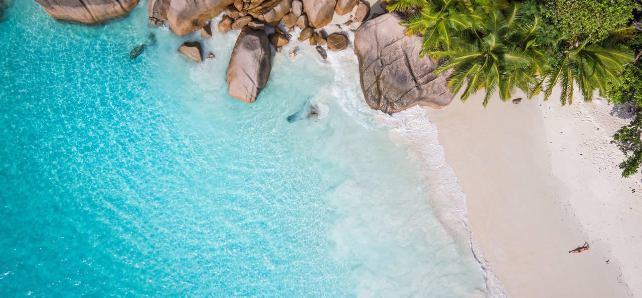 Seychelles shark beach