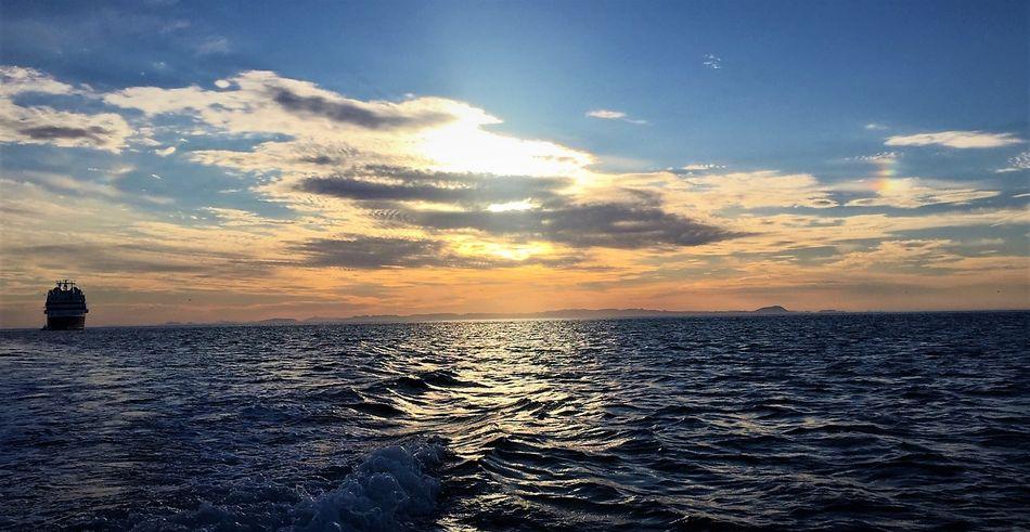 Silver Explorer in the Sea of Cortez
