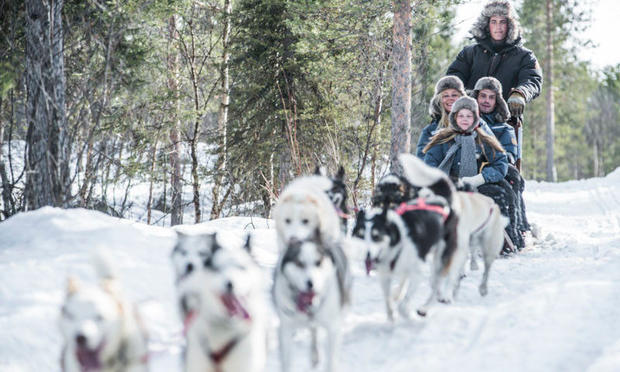 Dogsled ride at ICEHOTEL