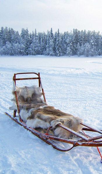 Sledges, Finnish Lapland