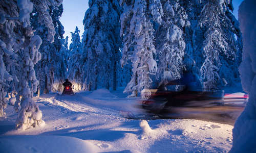 Rovaniemi's top ten winter excursions
