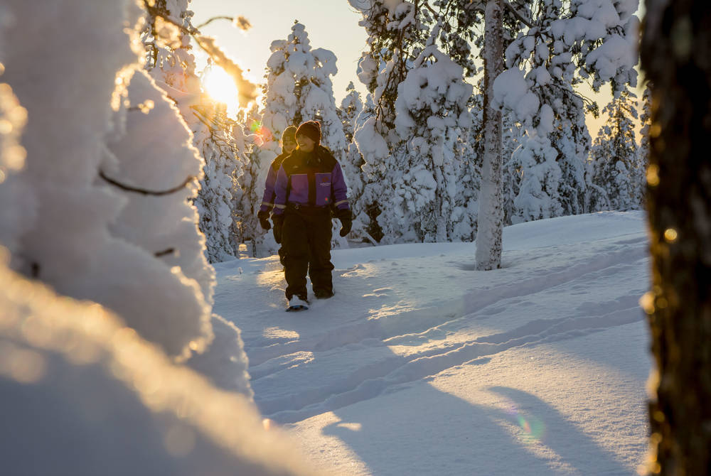 Snowshoeing, Safartica