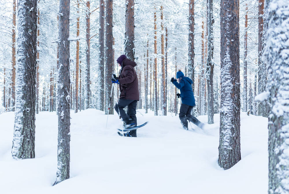 Snowshoeing at Loggers Lodge