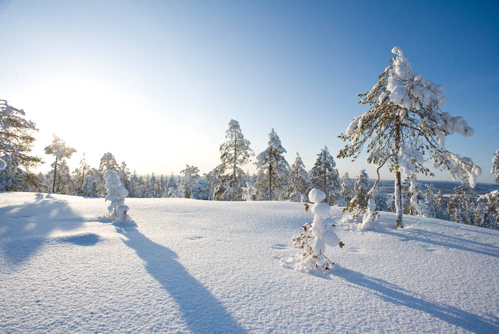 Winter in Rovaniemi (Credit: Visit Rovaniemi)