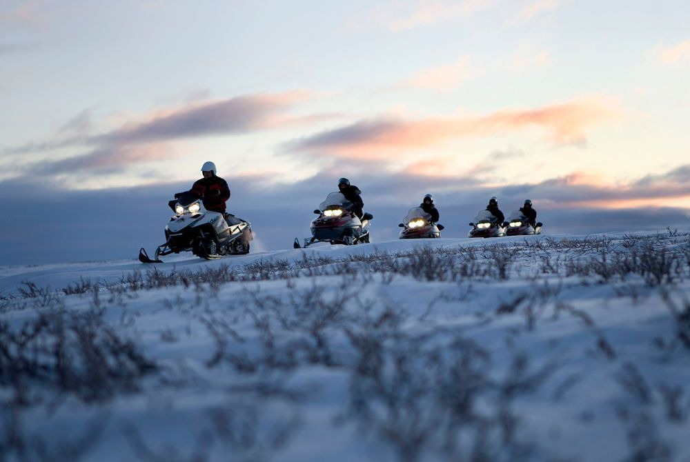 Snowmobiling Excursion in Alta