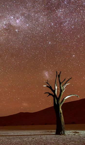 Sossusvlei is one of the world's finest stargazing destinations