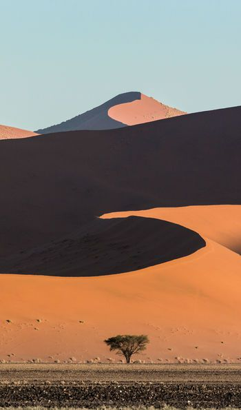 View of the red dunes at Sossusvlei
