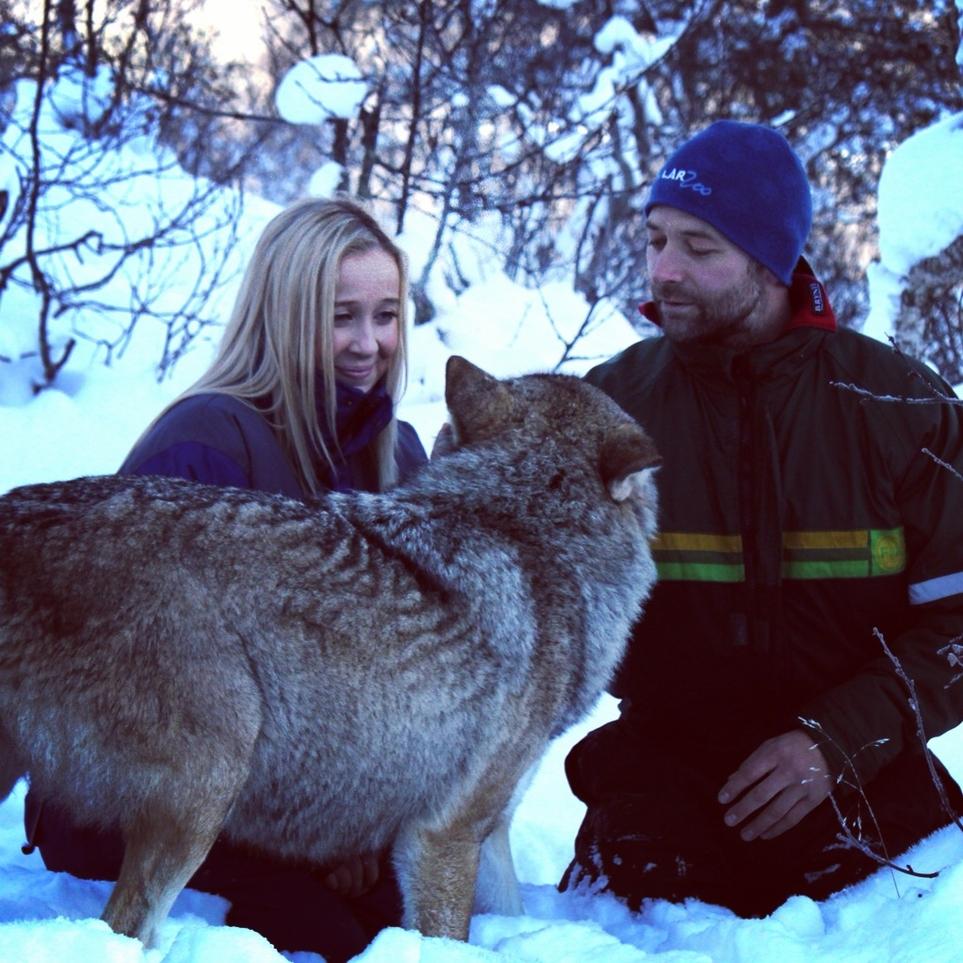 Steff in Lapland