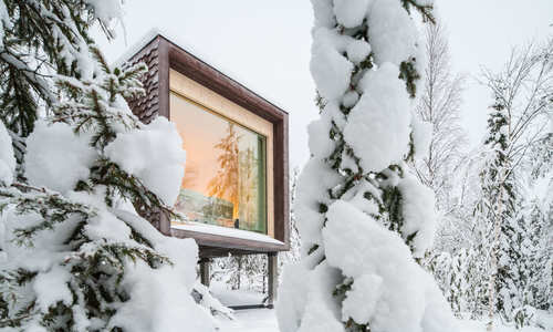 Arctic TreeHouse Hotel Break: Lapland in Style