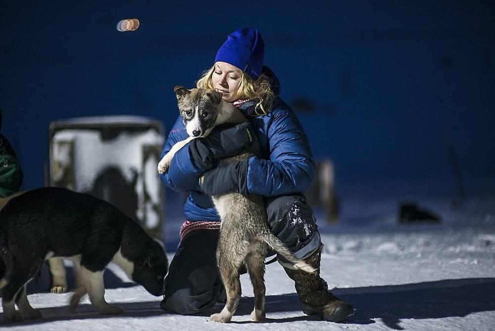 Meeting huskies in Spitsbergen, Svalbard