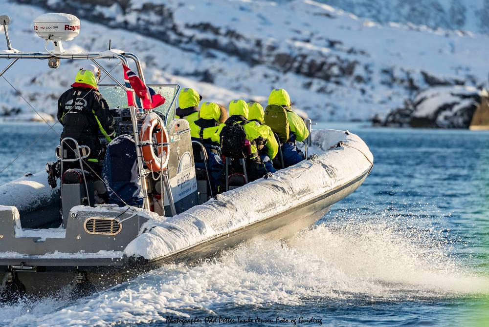 Rib boat, Svinoya Rorbuer