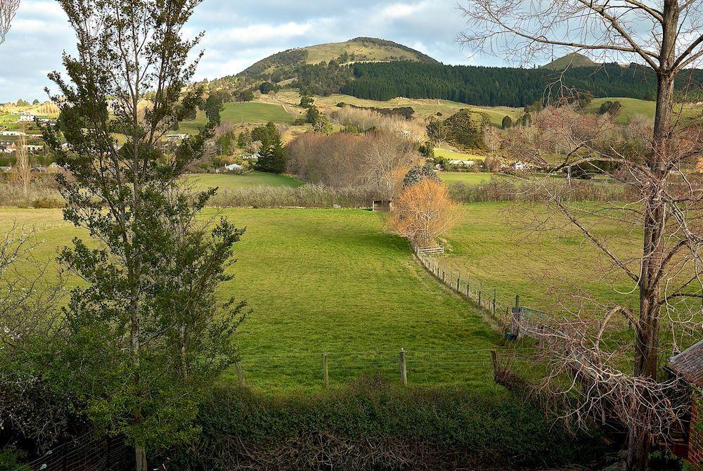 The Birches, Dunedin