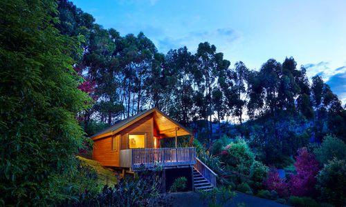 The Resurgence bush chalet, New Zealand