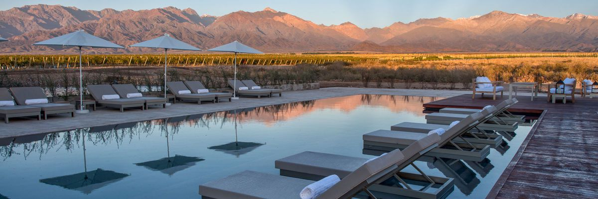 The Vines, Mendoza