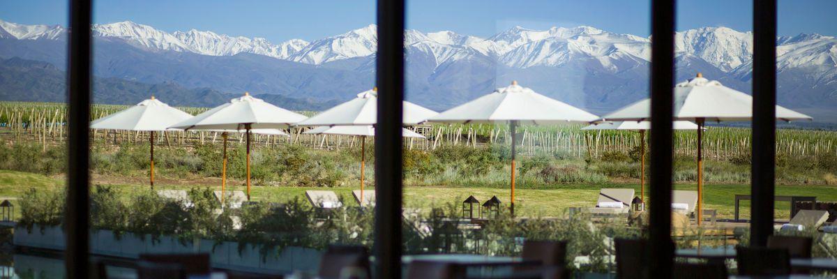 The Vines Resort and Spa, Mendoza