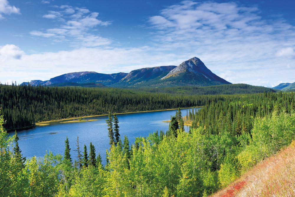 Highlights of the Yukon