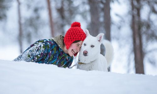 Torassieppi, Muonio, Lapland