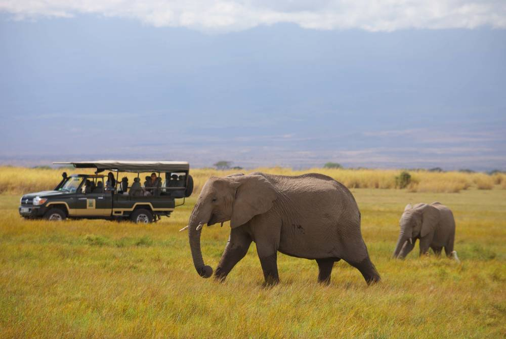 Elewana Tortilis Camp, Amboseli National Park