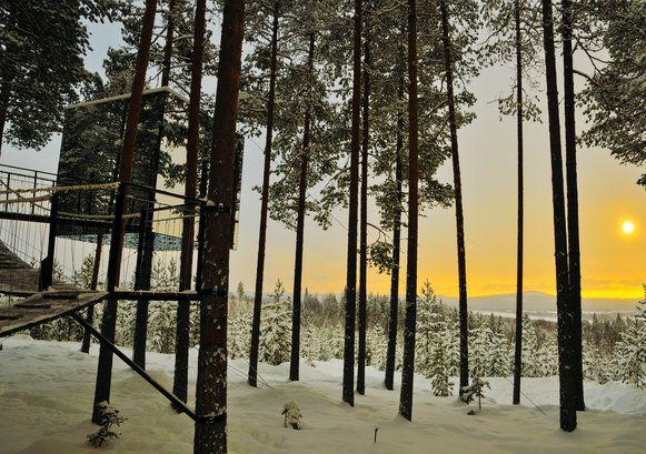 swedish lapland adventure treehotel sorbyn lodge holidays 2016 2017 best served scandinavia. Black Bedroom Furniture Sets. Home Design Ideas