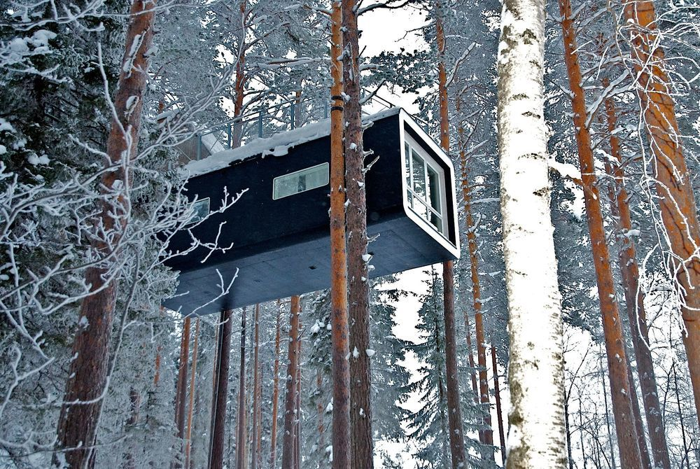 Swedish Lapland: Treehotel & Sorbyn Lodge