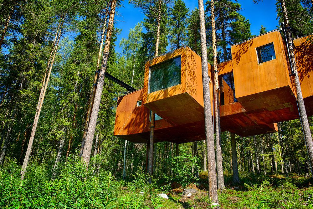 Under the Midnight Sun: lodges, Treehotel & ICEHOTEL