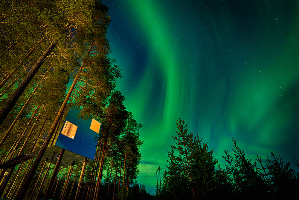 Treehotel & Northern Lights in autumn